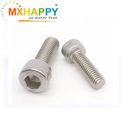 Stainless Steel 304 Socket Head Cap Screw M6